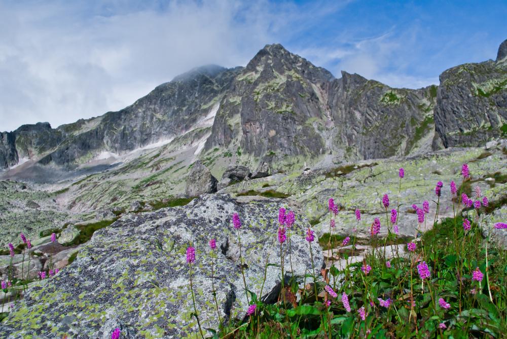 krajobraz gorski